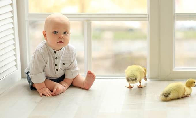 when babies begin to sit